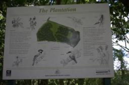 A visitor information board tells you more about the wildlife in the wood.
