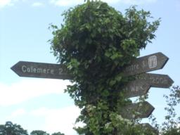 An old, and rather overgrown! fingerpost shows direction and distances.