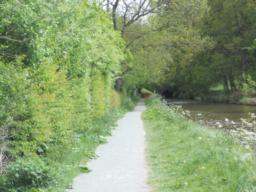 A long section of the towpath has recently been resurfaced to an excellent standard and provides good access.