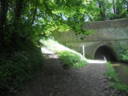 After a short distance you will reach the Ellesmere Tunnel (Bridge No. 57) which has a hand rail for guidance.