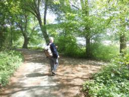 The Three Meres Walk can be extended by walking around Cole Mere. See the Colemere Phototrail on the Trail Index for more information