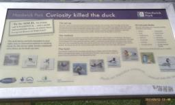 There is an information board here