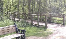 Turn left at the seat  to proceed along the Fen Carr Boardwalk, the boardwalk is approximately 200 metres in lenght