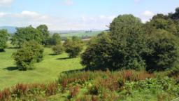 North of Wester Cartmore Farm/Steadings