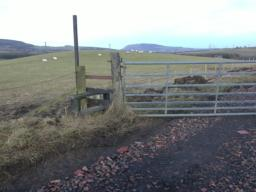 There is a stepping stile to the left of the farm gate.