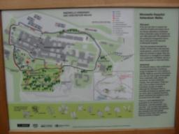 There is an information board which shows the routes available and also information on the different trees that are within the woodland and help identifying their leaves