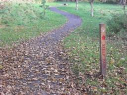 There is gentle slope at the beginning of the section of path that is sign posted as 'Steep'