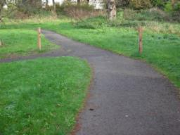 The junction here joins the all abilities trail to the left, but carry on ahead for a longer walk which joins the main trail