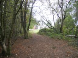 The path leads to a more open area as it leaves the woodland.
