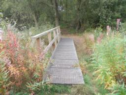 There are several boardwalks along the path, most of which contain step level changes.