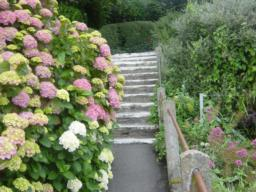 More steps down to Ilfracombe Museum car park