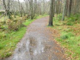 Surface water may accumulate on the path during periods of wet weather.