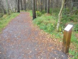 Children will enjoy using the 'rubbing posts' along the trail. These feature raised outlines of various woodland animals.