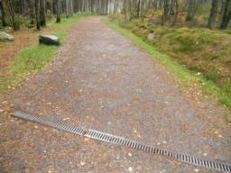 No physical man-made barriers, such as steps, gates or walls were found to restrict access along the Discovery Trail. Surface breaks, in the form of rain-drains occurred across the path but  present no significant barrier to access.