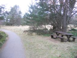 A picnic bench is situated in rough ground. This is the first formal rest area along the trail.