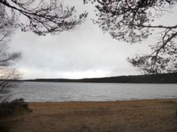 View of Loch Morlich.