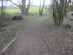 The path starts and is 130cm wide and the surface is compacted and firm, there are wooden edging strips at either side of the path