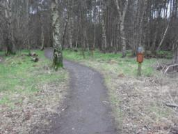 There is a camber across the path with a cross gradient on either side up to 8.2% (1:12)