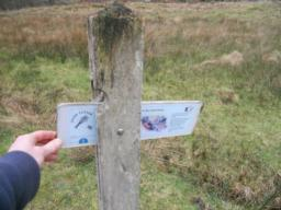 A number of information points are found along the trail, found in 'signal box' style posts. Pull the lever to reveal.