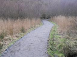 The Lochside path, described as 'all ability'  as  continues for another 20m or so.
