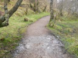 Small sections of the path may become muddy during periods of wet weather.
