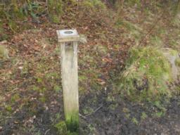 This post has a magnifier on the top for viewing small wildlife.