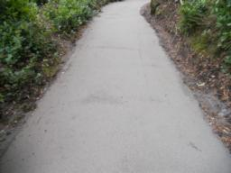 During the visit Contractors were resurfacing the path. This was being done to a very good standard.