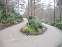 Several switchbacks have been created to reduce the uphill gradient.