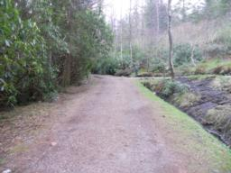 The path is at least 2m in width at the start of the trail.