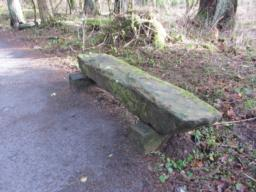 A informal seat is located on the first bend in the path.