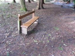 A bench is located next to the path, near the stream. Wheelchair users may find it difficult to access due to a lack of hard surfacing.