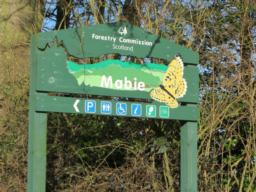 Mabie Forest Car Park is in Mabie Forest which is part of Forests of the Solway Coast.