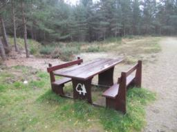 Bear left at this picnic bench.