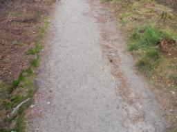 In places, weathering has had an effect on the path, although minimal.