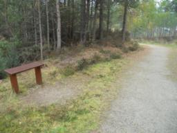 Perches are placed regularly along the trail.