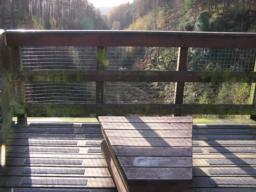 The viewpoint at the end of the boardwalk offers a dramatic view down into the valley.