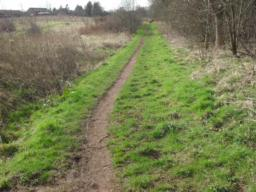 The path becomes very narrow at 35cm, this width now continues for a majority of the informal path