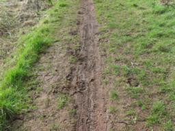The path condition deteriorates and can be very muddy and there is evidence that it is shared with horses and bikes.