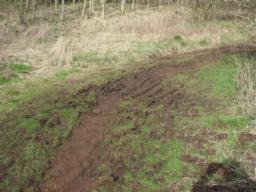 The path becomes very muddy