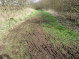 The surface at this section is heavily rutted with pooled water and evidence of motor bikes and horses.  The surface was not suitable to take a measure of gradient here.