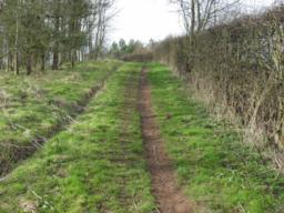 This slope has a maximum gradient of 23.6% (1:4) over 30m and the path width is 30cm