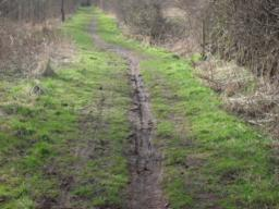 The path is heavily eroded with bike tracks and the surface is very muddy