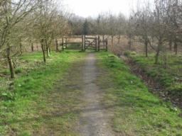 The path is made up of surfaced path which is approximately 40cm wide but the path appears to have been wider and a desire line has appeared through usage