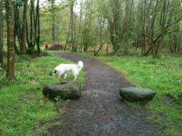 Two stones mark the entrance to the wood. Path narrows to 90cm between these stones.