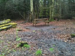 This second picnic bench is approx 12m from the surfaced path over muddy ground.