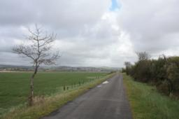 Panoramic views across the estuary and salt marsh - look out for birds here.