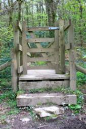 Steps up onto the bridge max 30cm x 2.  Max width through gate 80cm.  Steps down off bridge max 20com x 2.
