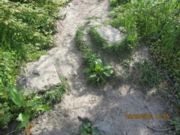 Uneven path.