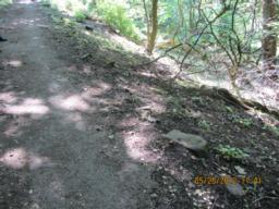 The path slopes down towards the steep bank -(gradient is 8.3% across the path).  Be careful here.