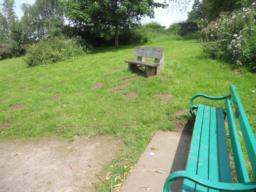 Two benches provide pleasant views into the reserve below. One of these has no hard-surfacing.